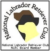 national labrador retriever club board member