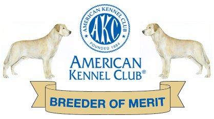 AKC Breeder of Merit Labs To Love Sandra Underhill