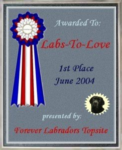 www.labstolove.com award winning website for lab pups